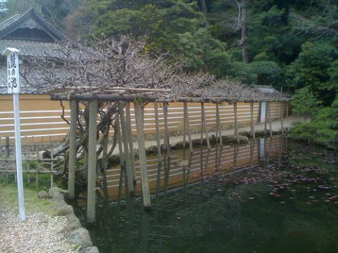 santuario-izumo.jpg